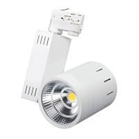 LGD-520WH-30W-4TR Day White